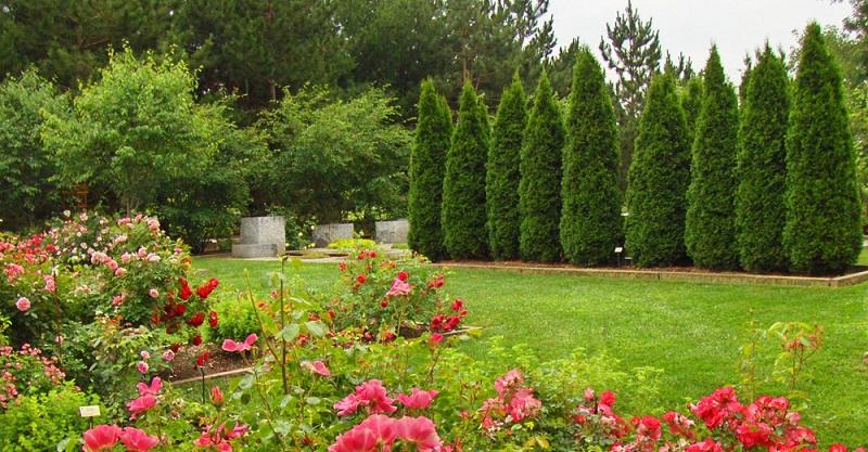 10 секретів садівництва які повинна знати кожна людина
