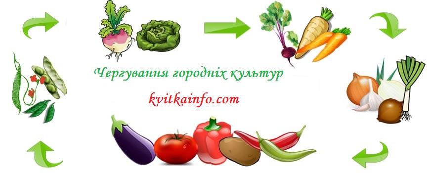 cherguvannya_gorodnih_kultur.jpg (74.75 Kb)