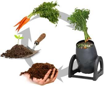 Як зробити компостер та чим корисний компост?