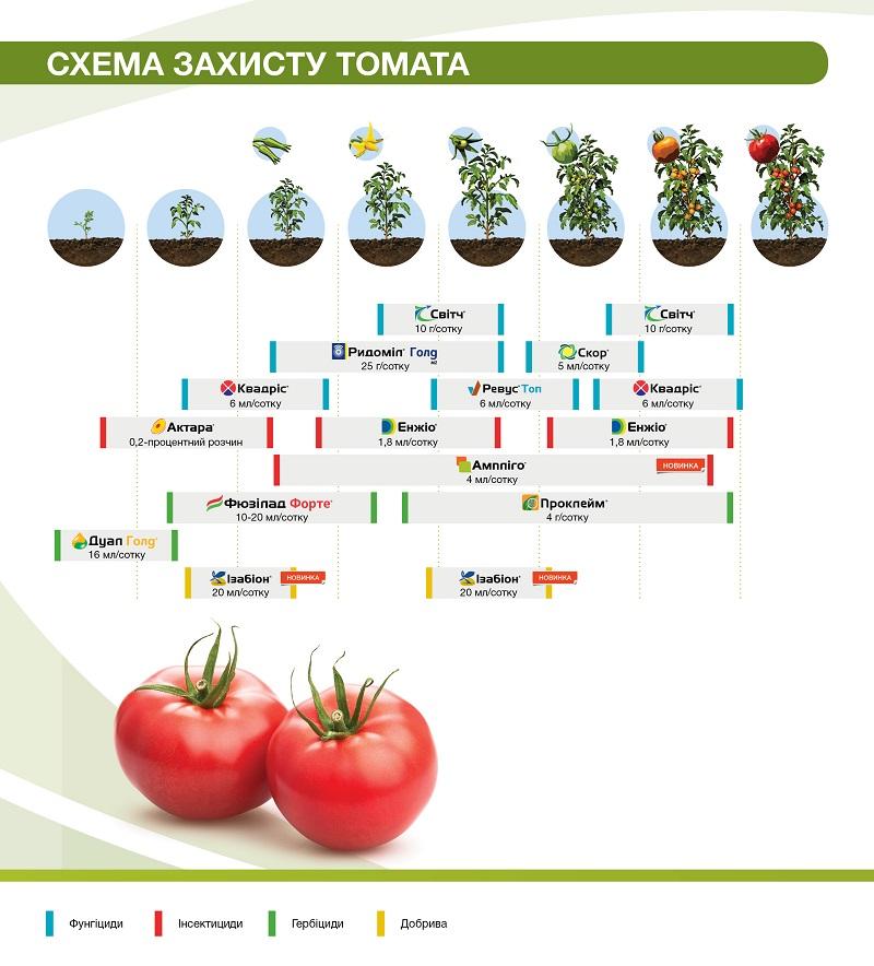 fruitsprotection_brochure_190x210_2018_dba14.jpg (154.58 Kb)