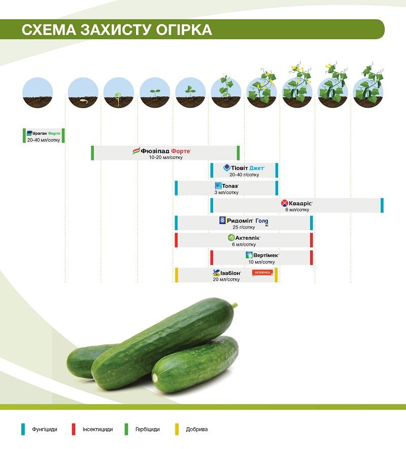 fruitsprotection_brochure_190x210_2018_dba16.jpg (124.22 Kb)