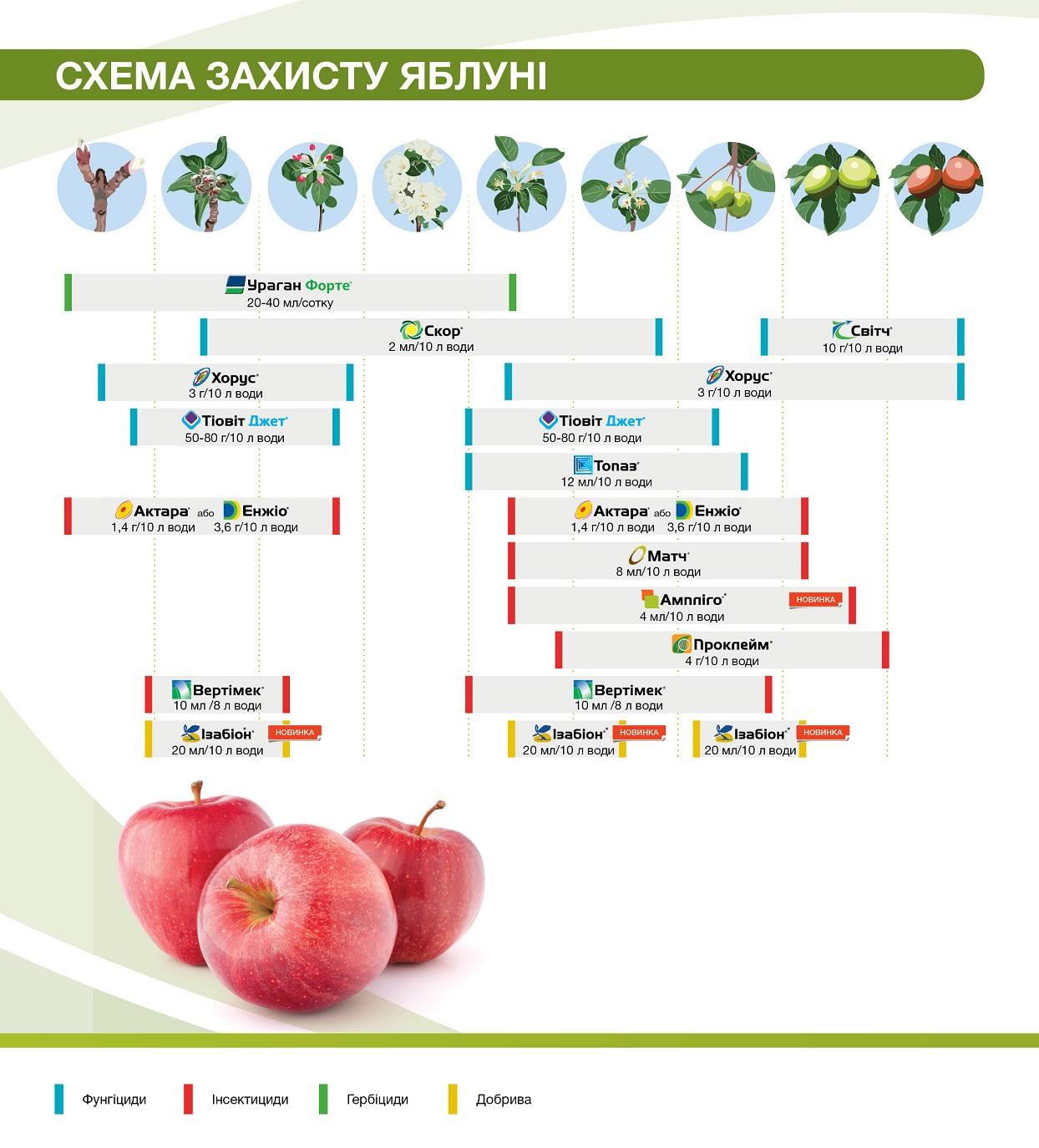 fruitsprotection_brochure_syngenta.jpg (284.99 Kb)