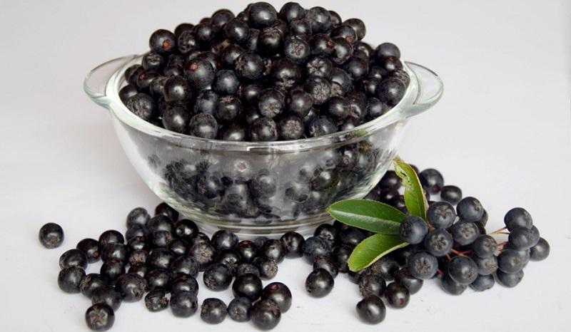 Цілющі рослини: чорноплідна горобина (аронія)