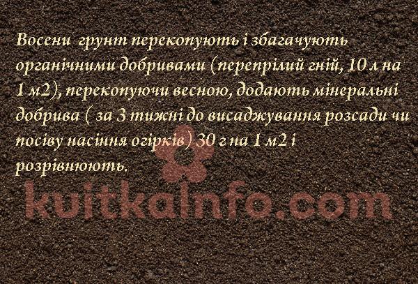 grunt_dlya_ogirkiv.jpg (389.04 Kb)