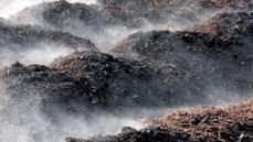 hot-compost1.jpg (6.15 Kb)