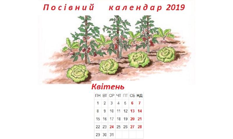 Посівний календар на квітень 2019