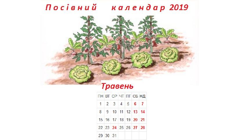 Посівний календар на травень 2019