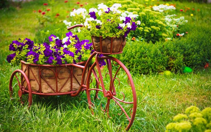 10 ідей для квіткової клумби