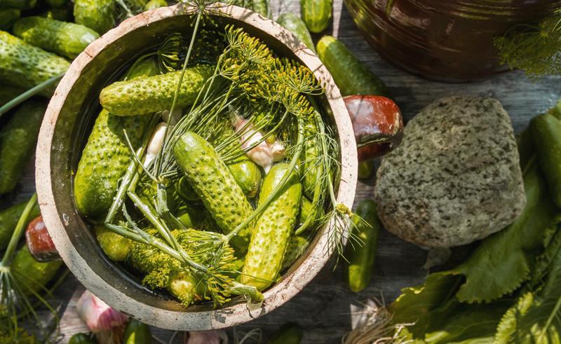Квашені огірки - рецепт