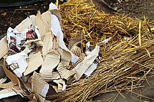 materyal_brown_for_compost.jpg (44.22 Kb)