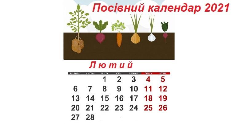 Посівний календар на лютий 2021 року