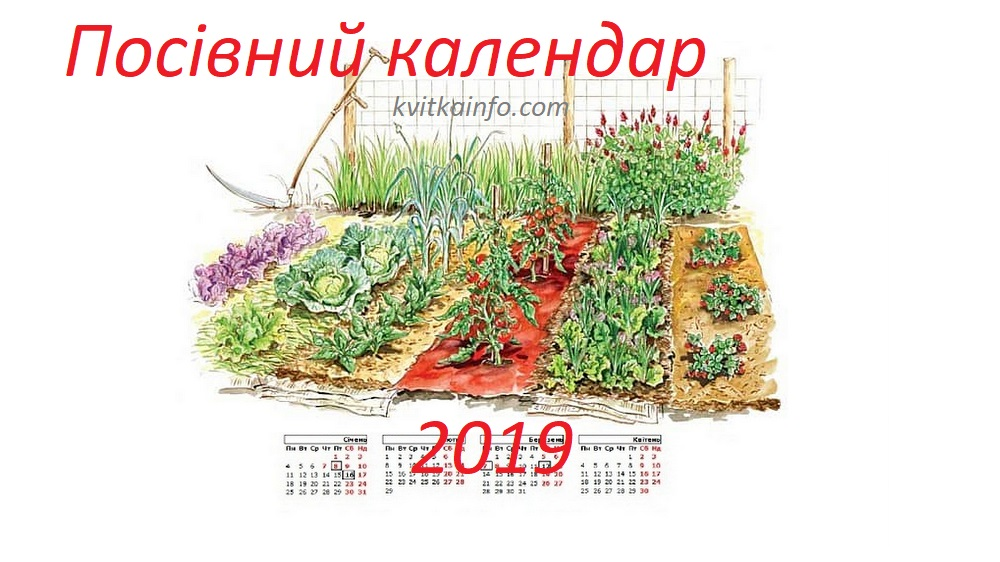 Посівний календар 2019