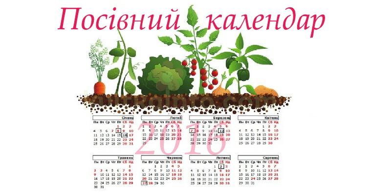 Коли сіяти насіння на розсаду 2016