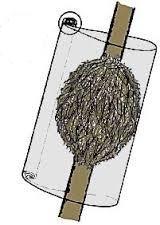 rozmnozhennya-povitryanimi-vidvodkami5.jpg (8.86 Kb)