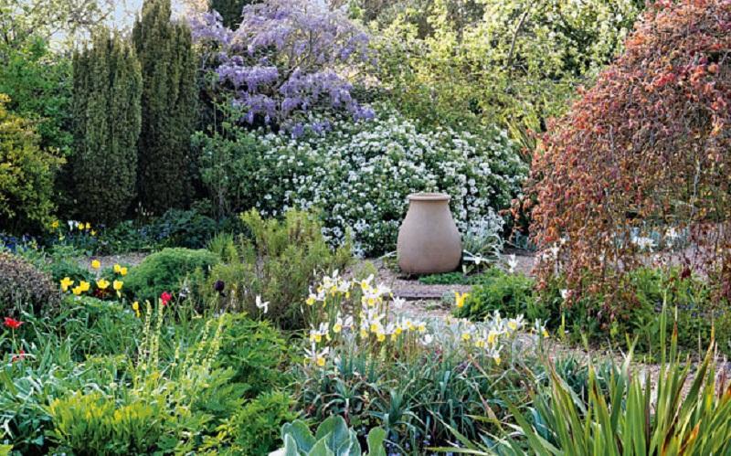 Як зробити затишний сад  –  поради початківцям