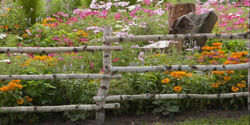 Сад у стилі «кантрі»