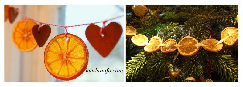 susheni_apelsini1.jpg (107.16 Kb)